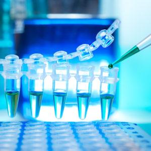 ПЦР тестирование совместно с Корейской лабораторией (3 гена) - результат через 2 дня